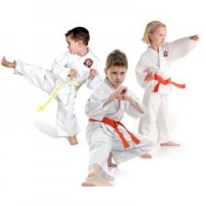 Cursuri de arte martiale